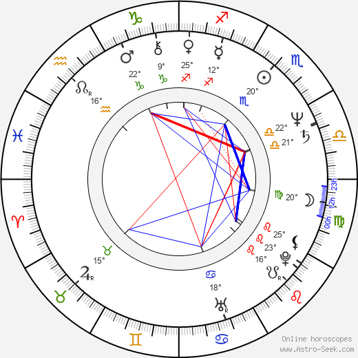 Aaron Lipstadt birth chart, biography, wikipedia 2019, 2020