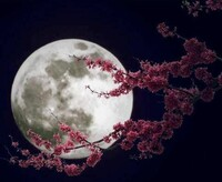 Moon_Queen